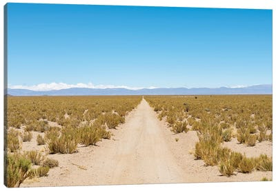 The track RN 38. Landscape near the salt flats Salar Salinas Grandes in the Altiplano, Argentina. Canvas Art Print