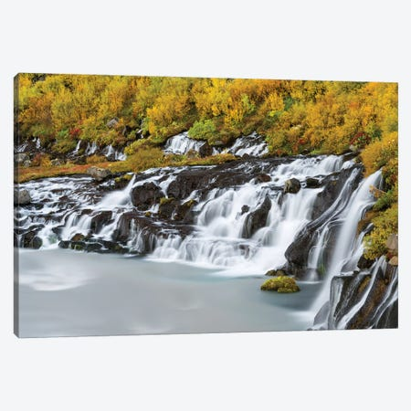 Waterfall Hraunfossar with colorful foliage during fall. Northern Iceland Canvas Print #MZW131} by Martin Zwick Canvas Artwork