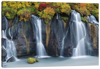 Waterfall Hraunfossar with colorful foliage during fall. Northern Iceland Canvas Art Print