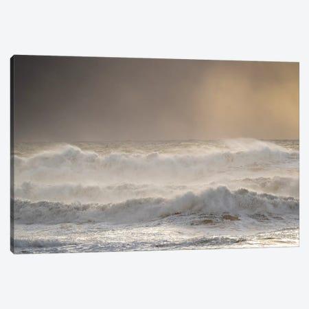 Coast Near Vik Y Myrdal During Winter. Storm At Beach Reynisfjara, Iceland. Canvas Print #MZW163} by Martin Zwick Art Print