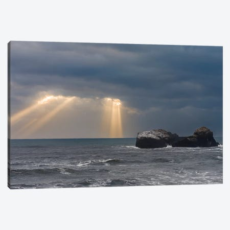 Coast Near Vik Y Myrdal During Winter. Storm At Dyrholaey, Iceland. Canvas Print #MZW164} by Martin Zwick Canvas Wall Art