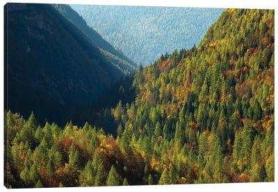 Italy, Valle Corpassa in Civetta, Moiazza mountain range in the dolomites of the Veneto Canvas Art Print