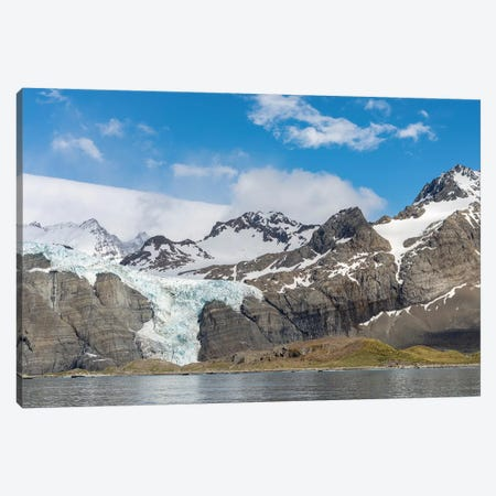 Gold Harbour with mighty Bertrab Glacier on South Georgia Island 3-Piece Canvas #MZW76} by Martin Zwick Canvas Wall Art