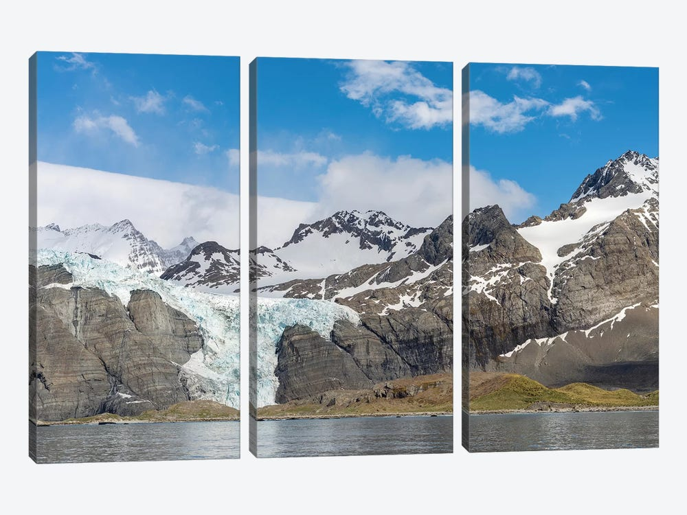 Gold Harbour with mighty Bertrab Glacier on South Georgia Island by Martin Zwick 3-piece Canvas Art Print