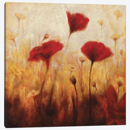 Poppies And Daisies I Canvas Print #NAC3} by Natalie Carter Canvas Wall Art