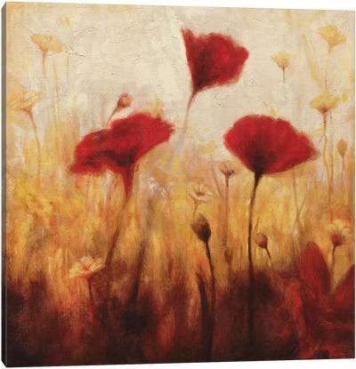 Poppies And Daisies I Canvas Print #NAC3
