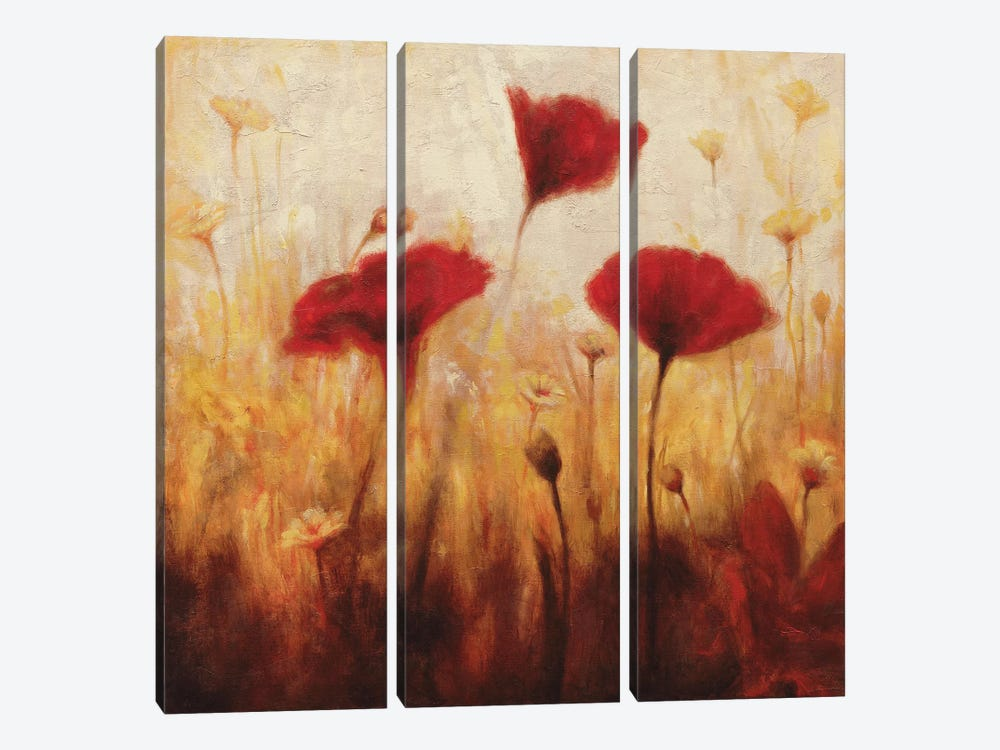 Poppies And Daisies I by Natalie Carter 3-piece Art Print