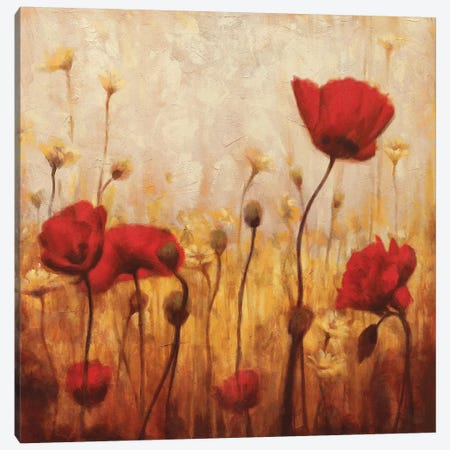 Poppies And Daisies II Canvas Print #NAC4} by Natalie Carter Canvas Print