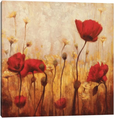 Poppies And Daisies II Canvas Art Print
