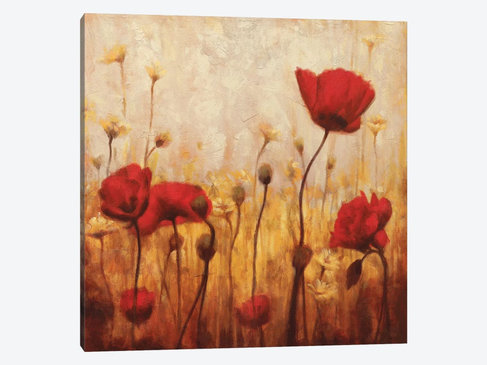 Poppies And Daisies II by Natalie Carter 1-piece Canvas Wall Art