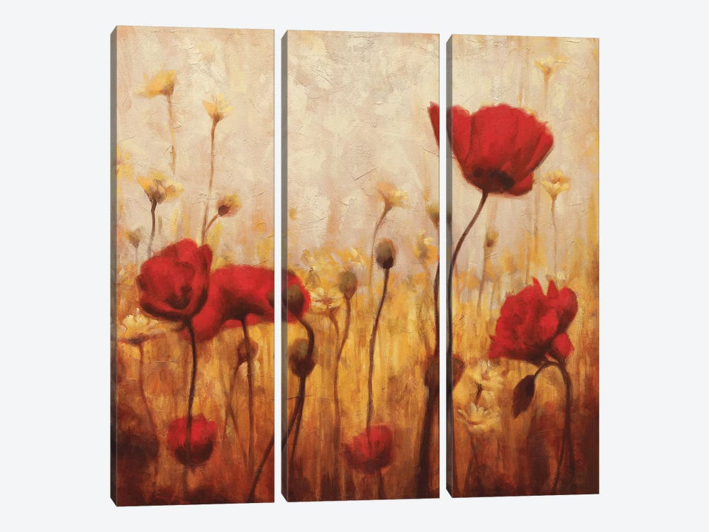 Poppies And Daisies II by Natalie Carter 3-piece Canvas Artwork