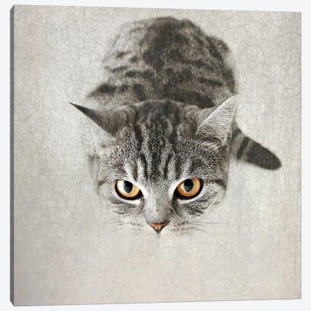 Hello Kitty Canvas Print #NAD2} by Nadia Attura Canvas Print