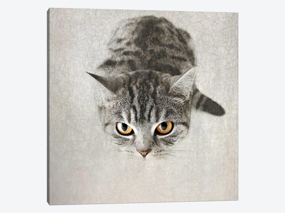 Hello Kitty by Nadia Attura 1-piece Canvas Art Print