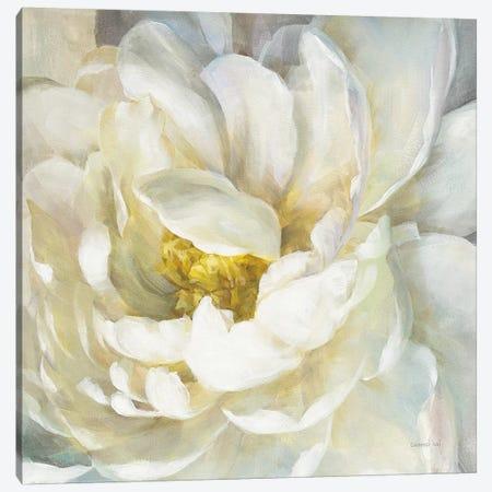 Summer Joy II Canvas Print #NAI102} by Danhui Nai Canvas Art