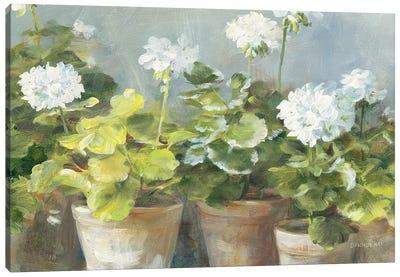 White Geraniums v2 Canvas Art Print
