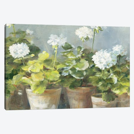 White Geraniums v2 Canvas Print #NAI103} by Danhui Nai Canvas Wall Art