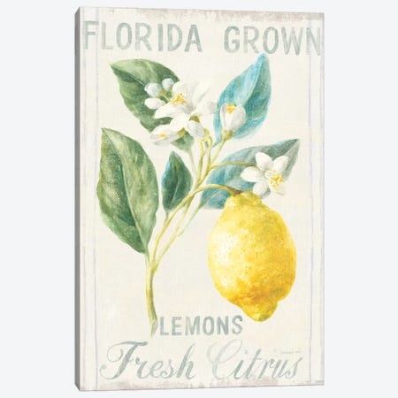 Floursack Lemon I Canvas Print #NAI10} by Danhui Nai Art Print