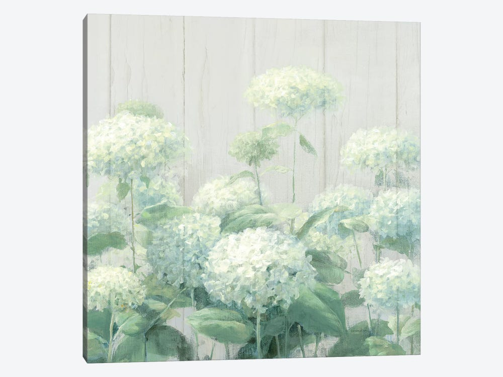 White Hydrangea Garden Sage on Wood Square by Danhui Nai 1-piece Canvas Print