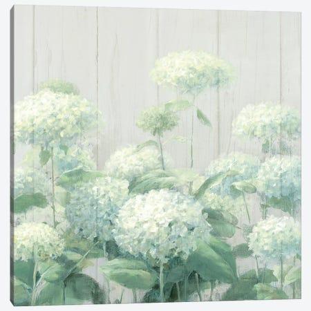 White Hydrangea Garden Sage on Wood Square Canvas Print #NAI113} by Danhui Nai Canvas Art Print