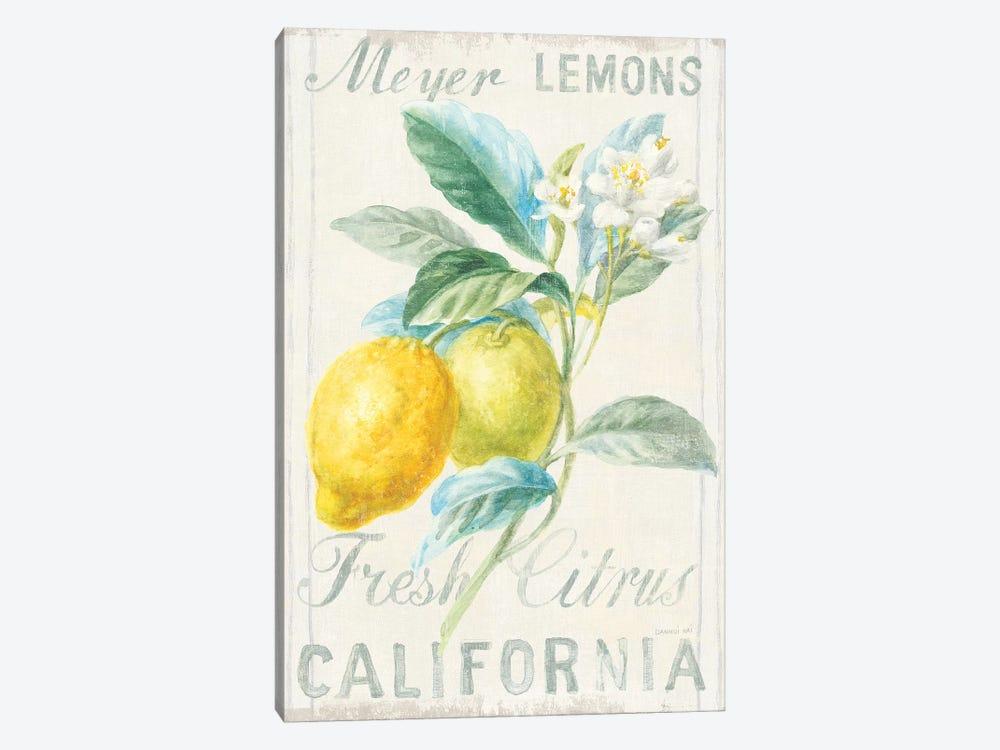 Floursack Lemon II by Danhui Nai 1-piece Canvas Print