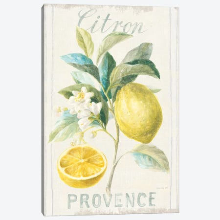 Floursack Lemon IV Canvas Print #NAI12} by Danhui Nai Canvas Art Print