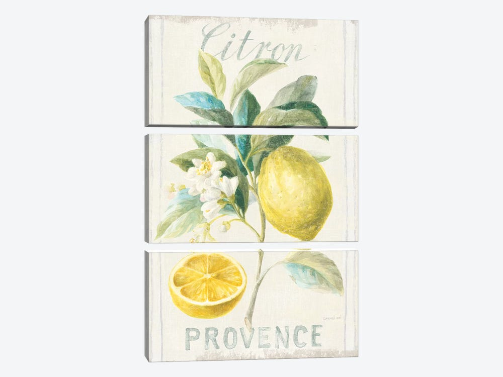 Floursack Lemon IV by Danhui Nai 3-piece Canvas Artwork