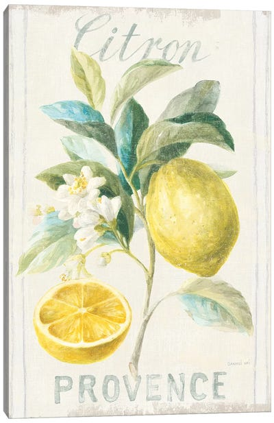 Floursack Lemon IV Canvas Art Print