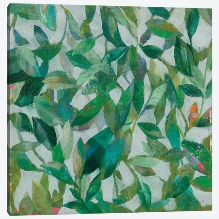 Summer Garden Greenery I Canvas Print #NAI134} by Danhui Nai Canvas Wall Art
