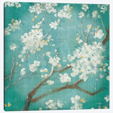 White Cherry Blossoms I Aged no Bird Canvas Print #NAI135} by Danhui Nai Canvas Art