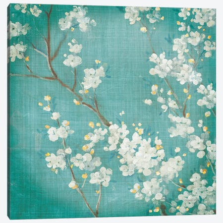 White Cherry Blossoms II Aged no Bird Canvas Print #NAI136} by Danhui Nai Canvas Wall Art