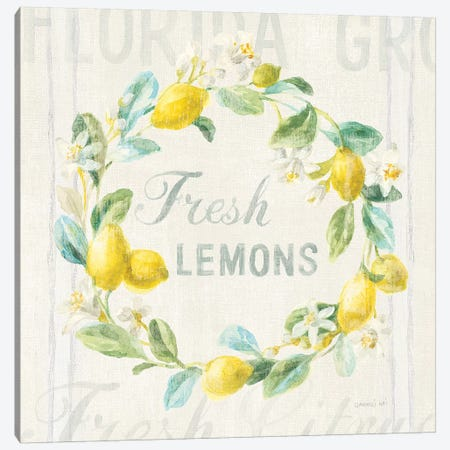 Floursack Lemon V Canvas Print #NAI13} by Danhui Nai Art Print