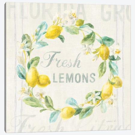 Floursack Lemon V Canvas Print #NAI13} by Danhui Nai Art Print