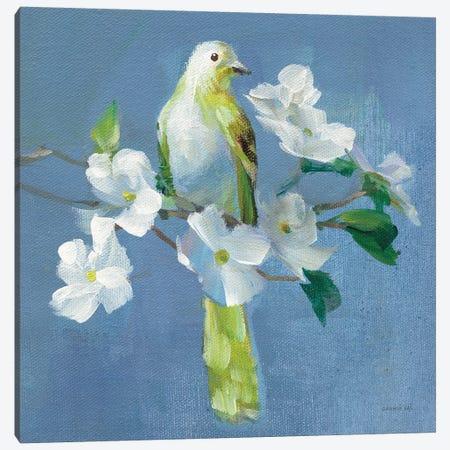 Spring in the Neighborhood II Canvas Print #NAI152} by Danhui Nai Art Print