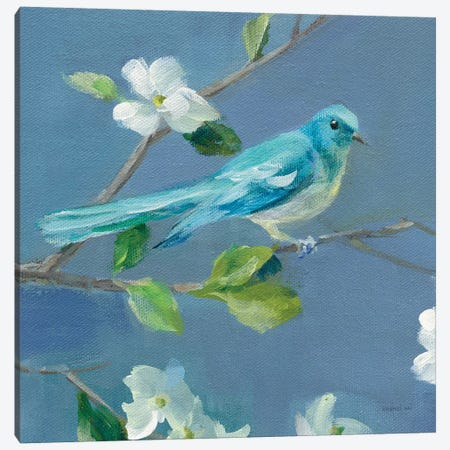 Spring in the Neighborhood IV Canvas Print #NAI154} by Danhui Nai Canvas Wall Art