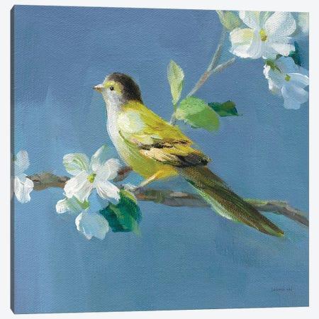 Spring in the Neighborhood V Canvas Print #NAI155} by Danhui Nai Canvas Wall Art