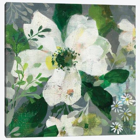Anemone and Friends III Canvas Print #NAI159} by Danhui Nai Canvas Print