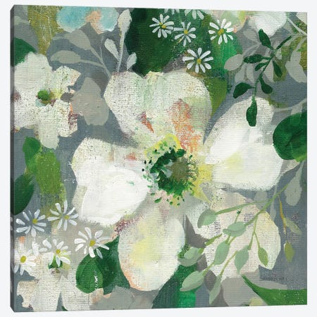 Anemone and Friends IV Canvas Print #NAI160} by Danhui Nai Canvas Artwork