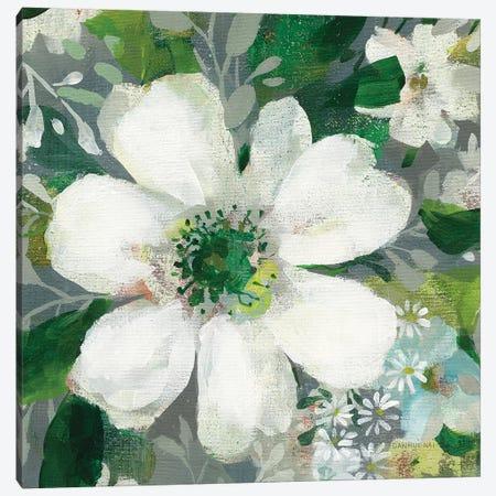 Anemone and Friends V Canvas Print #NAI161} by Danhui Nai Canvas Art