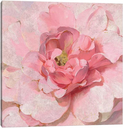 Blushing Metallic Peony Canvas Art Print