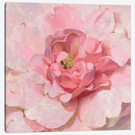 Blushing Metallic Peony Canvas Print #NAI162} by Danhui Nai Canvas Art