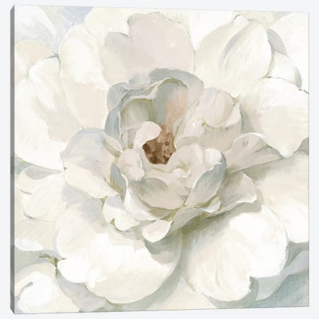 Neutral Peony Canvas Print #NAI194} by Danhui Nai Canvas Art