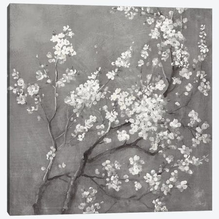 White Cherry Blossoms I on Grey Crop Canvas Print #NAI197} by Danhui Nai Canvas Artwork
