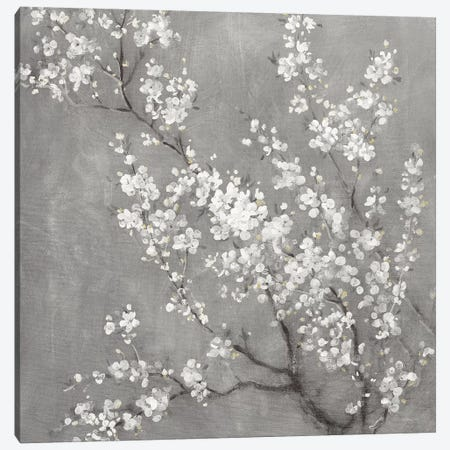 White Cherry Blossoms II on Grey Crop Canvas Print #NAI198} by Danhui Nai Canvas Art Print