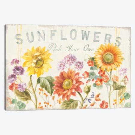 Floursack Autumn IX Sunflowers Canvas Print #NAI210} by Danhui Nai Canvas Wall Art