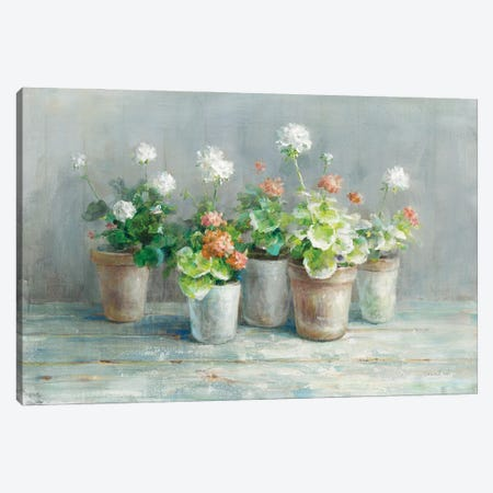 Farmhouse Geraniums Canvas Print #NAI246} by Danhui Nai Canvas Wall Art