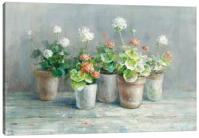Farmhouse Geraniums Canvas Art Print