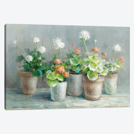 Farmhouse Geraniums Crop Canvas Print #NAI247} by Danhui Nai Canvas Wall Art