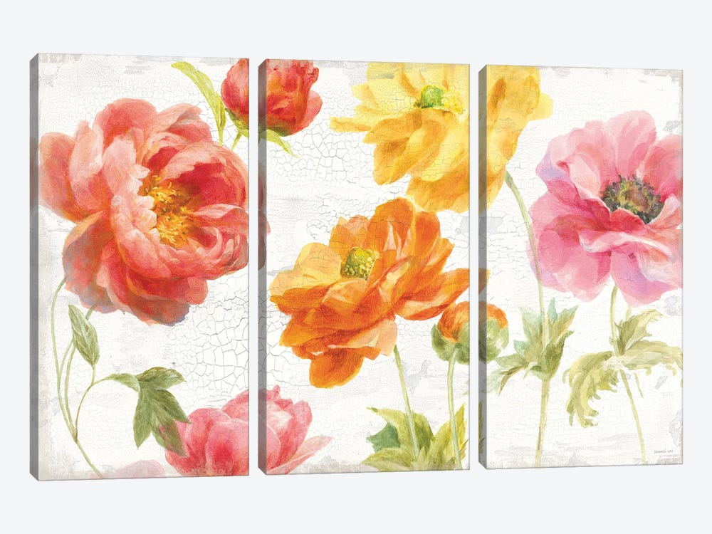Full Bloom I by Danhui Nai 3-piece Canvas Wall Art