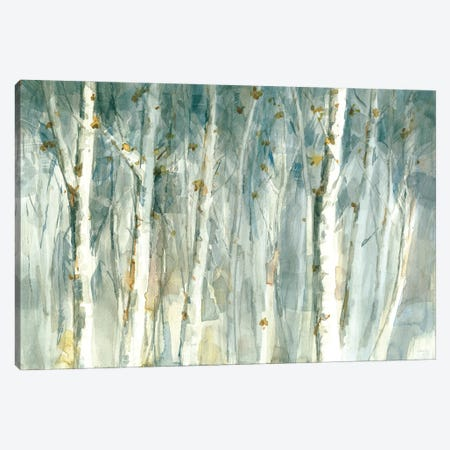 Meadows Edge II Canvas Print #NAI259} by Danhui Nai Canvas Art