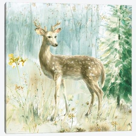 Meadows Edge III Canvas Print #NAI260} by Danhui Nai Canvas Art Print